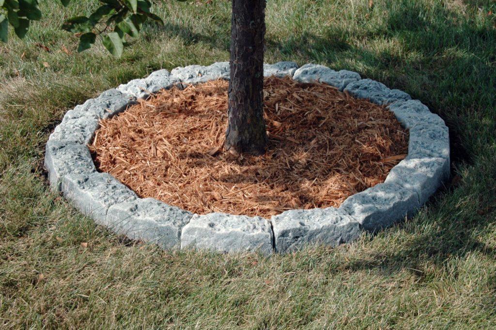 Что можно посадить под яблоней