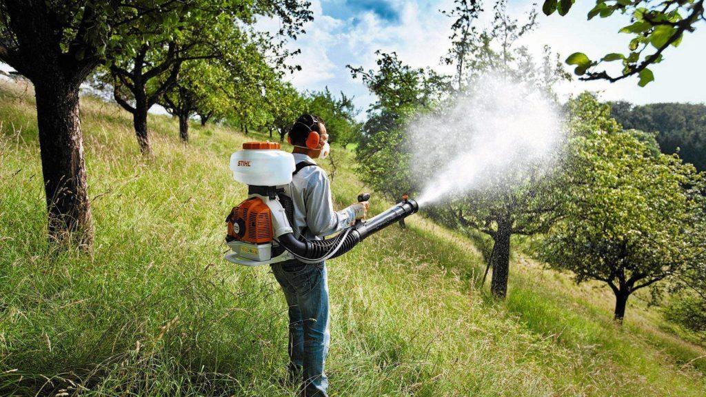 весеннее опрыскивание плодовых деревьев и кустарников