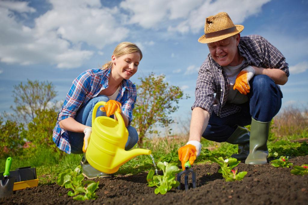 садовник и сад
