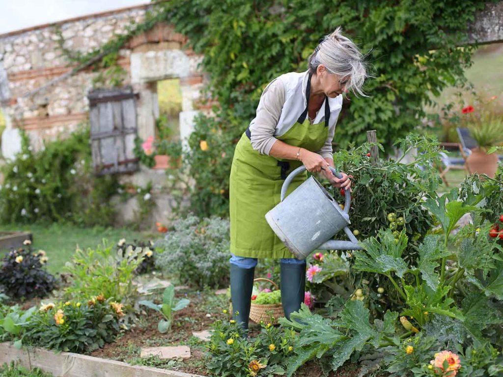 садовник и дача