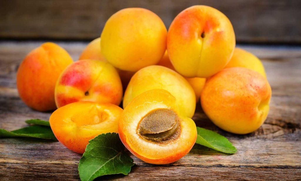 плод абрикос Графиня