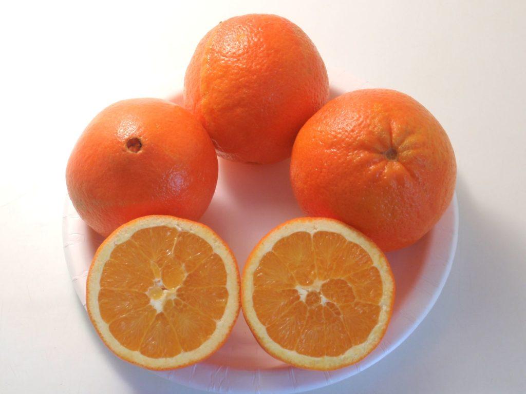 Выращивание апельсина дома