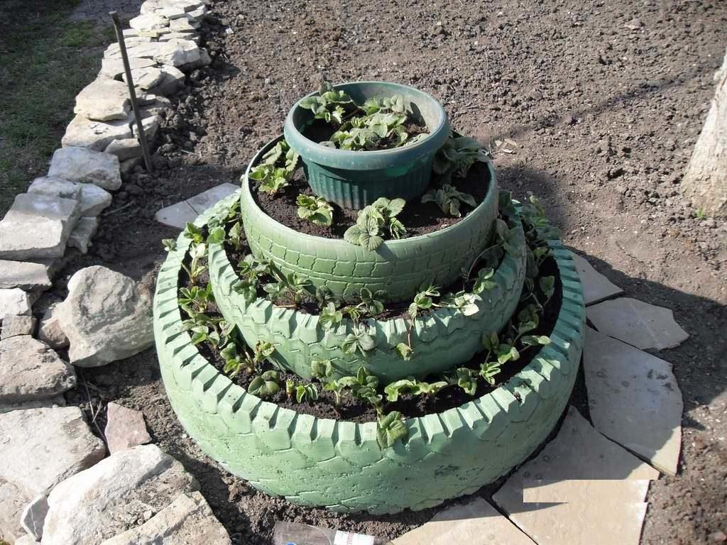 Почва для клубники и схемы формирования грядок