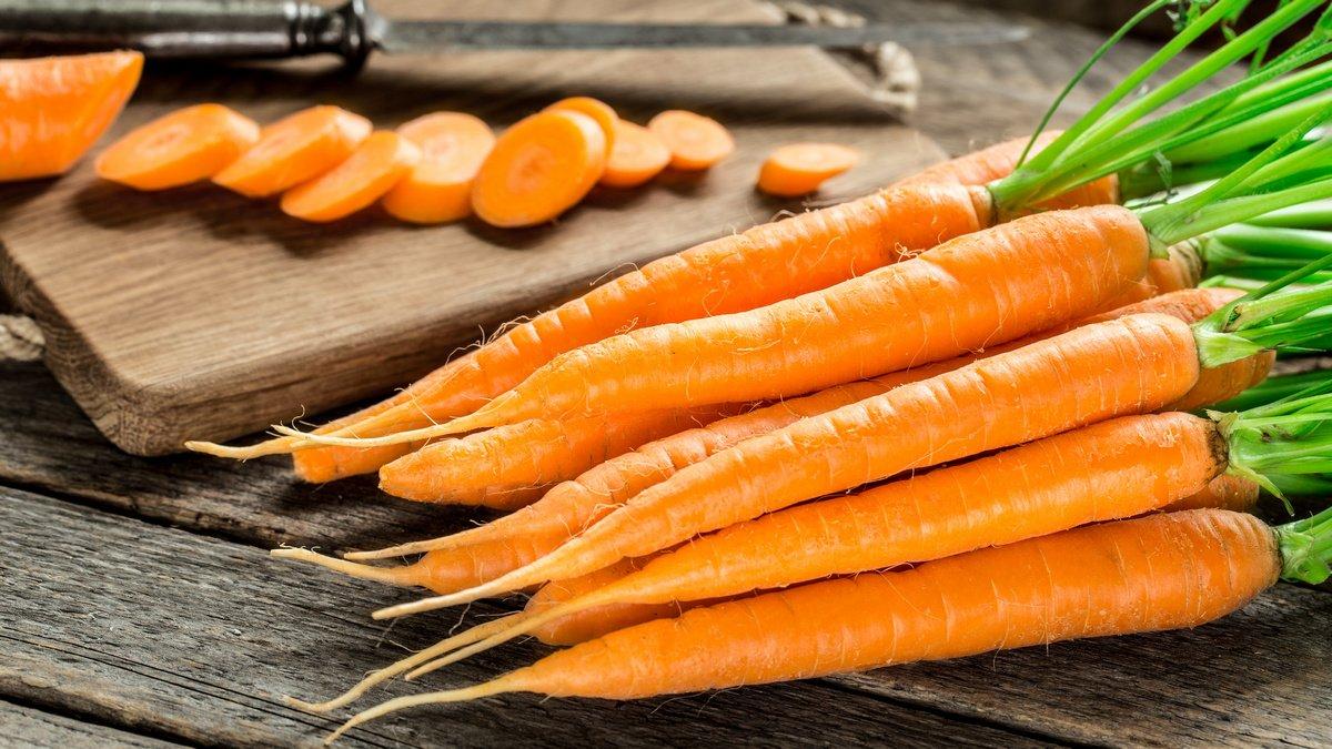 болезни моркови при выращивании