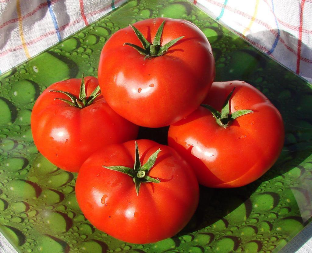 помидоры рядом с перцем