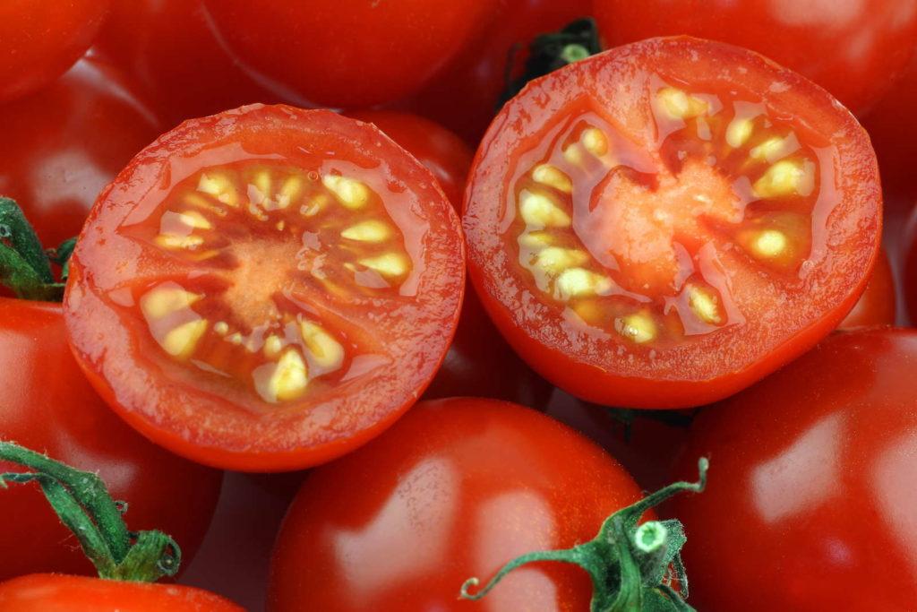 Семена помидора в картинках